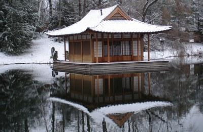 Nhà trà tu viện Rừng Phong