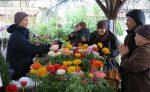 Chợ hoa - 4