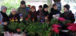 Chợ hoa - 8