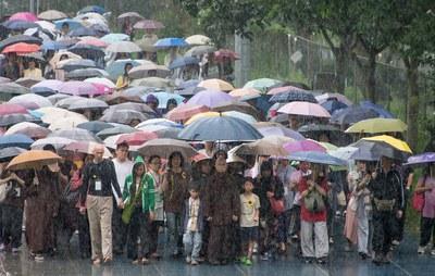 Thiền hành trong mưa tại Hồng Kông