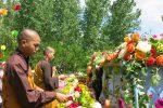 Lễ Phật Đản.11