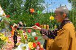 Lễ Phật Đản.18