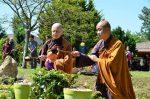 Lễ Phật Đản.7