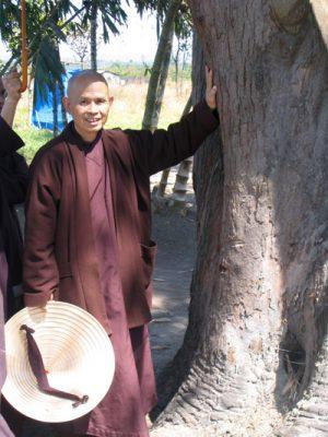 Thay tham Phuong Boi 2005