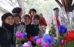 vui cho hoa 6
