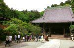 Thiền hành tại chùa Myohonji ở Kamakura.